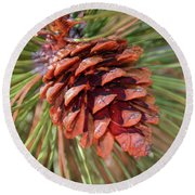 Pine Cone Round Beach Towel by Patti Deters