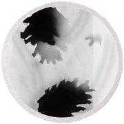 Pine Cones Monochrome Photogram White Background  Round Beach Towel