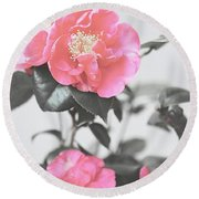 Pink Camellia. Shabby Chic Collection Round Beach Towel