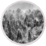 Pinsapos Into The Woods. Bw. Foggy Sunrise Round Beach Towel