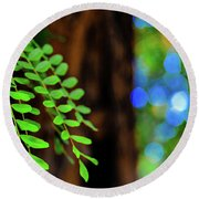 Plants, Trees And Flowers Round Beach Towel