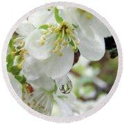Plum Blossoms 2 Round Beach Towel