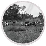 Pony Herd Bnw Round Beach Towel