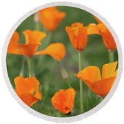 Poppies In The Breeze Round Beach Towel