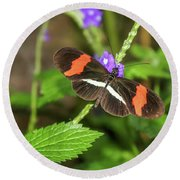 Postman Butterfly 1 Round Beach Towel by Dawn Richards
