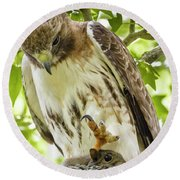 Predator With Prey Round Beach Towel
