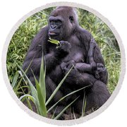 Proud Mama Silverback 6243 Round Beach Towel by Donald Brown