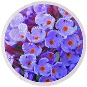Purple Flowers In The Morning Dew Round Beach Towel