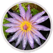 Purple Lotus Water Lily Round Beach Towel