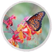 Queen Butterfly On Mexican Bird Of Paradise  Round Beach Towel