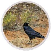 Raven, Grand Canyon Round Beach Towel by Dawn Richards