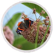 Red Admiral Butterfly On Milkweed Round Beach Towel