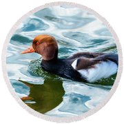 Red Crested Red Beak Red Eye Duck Round Beach Towel
