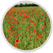 Red Poppies Meadow Round Beach Towel