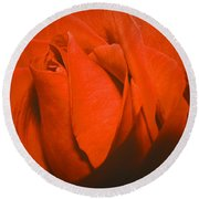 Red Rose Special Round Beach Towel