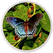 Red-spotted Purple Butterfly 017 Round Beach Towel