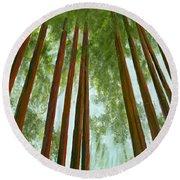 Redwood Forest Round Beach Towel