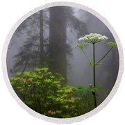 Redwoods By Crescent City 1 Round Beach Towel