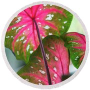 Reflections On The Calming Of Pink Round Beach Towel