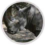 Rhino Standing In The Shade On A Summer Day Round Beach Towel