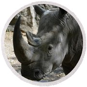 Rhinoceros With Two Horns Up Close And Personal Round Beach Towel