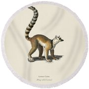 Ring-tailed Lemur  Lemur Catta  Illustrated By Charles Dessalines D' Orbigny  1806-1876  Round Beach Towel
