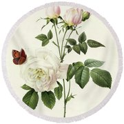 Rosa Bengale The Hymenes By Redoute Round Beach Towel