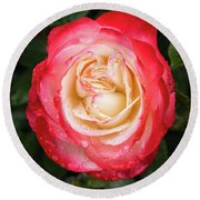 Rose And Rain - The Ice-cream Rose Round Beach Towel