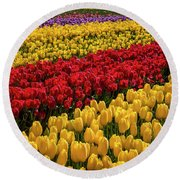 Row After Row After Row Of Tulips Round Beach Towel