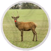 Rudolph The Red Nosed Reindeer Round Beach Towel