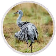 Ruffled Crane Round Beach Towel
