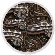 S Is For Snakes Round Beach Towel