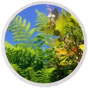 Salal Blooms Amongst The Ferns Round Beach Towel