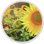 Save The Bees Round Beach Towel