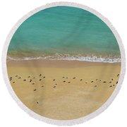 Seagulls Relaxing In Deserta Beach Round Beach Towel