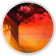 Shade Tree At Dawn Round Beach Towel