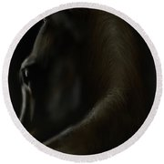 Shadow Horse Round Beach Towel by Darren Cannell