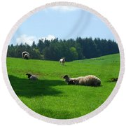 Sheep And Lambs In A Field Round Beach Towel