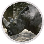 Side Profile Of A Large Rhinoceros With Two Horns  Round Beach Towel