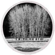 Silver Trees, Yosemite National Park Round Beach Towel