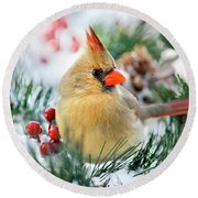 Snow Cardinal Round Beach Towel