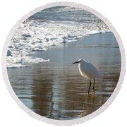 Snowy Egret On A California Beach Round Beach Towel by Mary Lee Dereske