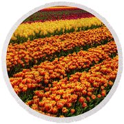 Stunning Rows Of Colorful Tulips Round Beach Towel