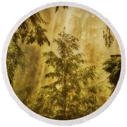 Sunbeams In The Foggy Forest #3 Round Beach Towel