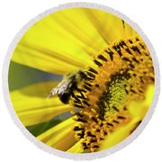 Sunflower And Bee Round Beach Towel
