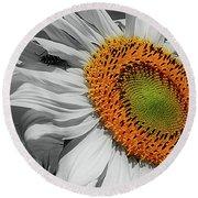 Sunflower And Shy Friend Round Beach Towel