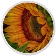 Sunflower Beauty Round Beach Towel by Judy Hall-Folde