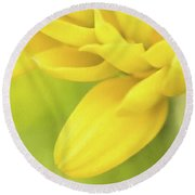 Sunshine Petals Round Beach Towel