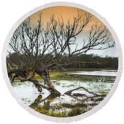 Swamp And Dead Tree Round Beach Towel