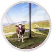 Swiss Cow Round Beach Towel